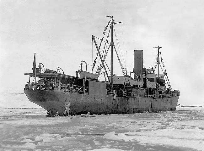 Фото из архива Государственного музея Арктики и Антарктики